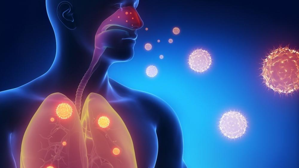 В Москве 13 ноября 2014 года состоялась ежегодная научно-практическая конференция «Современные подходы к ведению больных с внебольничными инфекциями дыхательных путей»